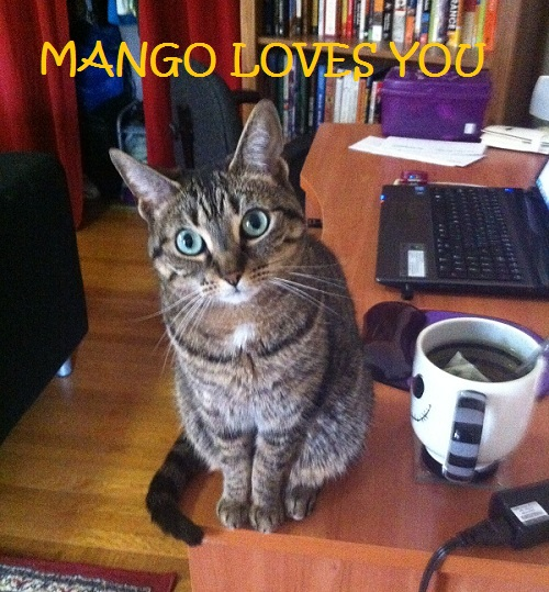 Mango Saves